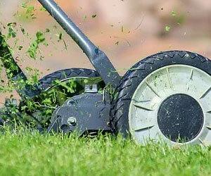 כיסוח דשא